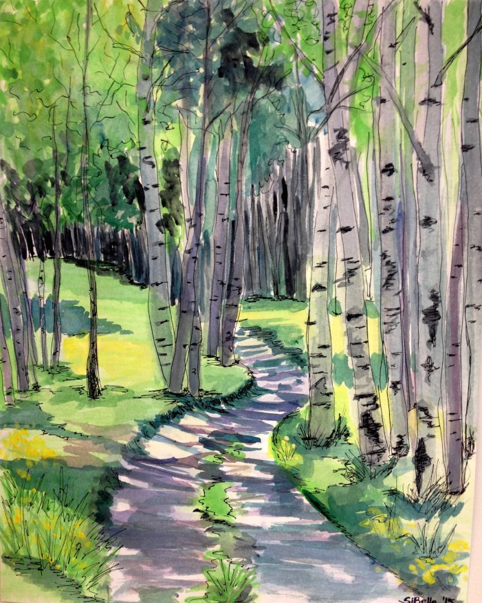 Shaded forest way